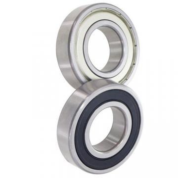 6303 6304 6305 6306 6307 Zz 2RS Motor Ball Bearing
