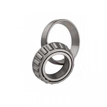 Taper Roller Bearing with P0 P6 Quality, Shouguang Steel, Bearing Factory