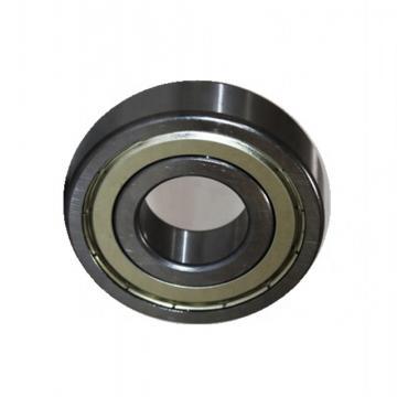 Deep Groove Ball Bearing Distributor of NSK SKF NTN Koyo 6201 6202