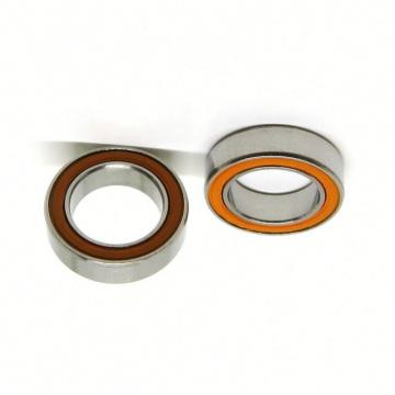 Ceramic Bearing High Temperature and Corrosion Resistant 6204ce