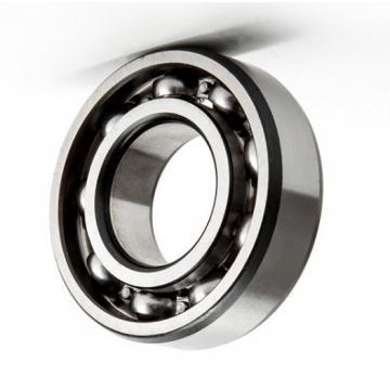 High Temperature and Corrosion Resistant 6000/6200/6300/6400/6800/6900 Series Ceramic Bearings/Hybrid Bearing